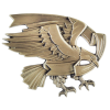 Casting — Modern Eagle