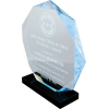 Octagon Acrylic EMS Award