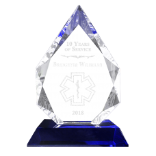 Blue Crystal Arrow EMS Award