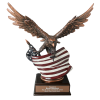 Bronze Eagle Award