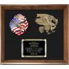 Framed Display Award - Eagle Casting