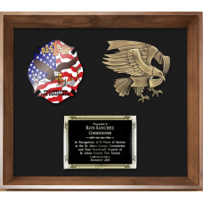 Framed Display Award - Eagle Casting