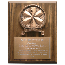 Bronze Copper EMS Plaque