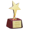 Bright Star Award
