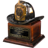 Bronze Fire Helmet Award